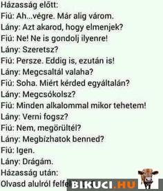 Asd, Hungary, Jokes, Feelings, Random, Funny, Husky Jokes, Animal Jokes, Funny Jokes