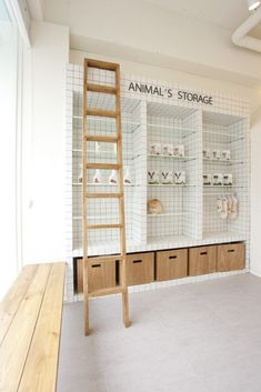 Dog Grooming Shop, Dog Grooming Salons, Dog Shop, Boutique Interior, Boutique Bio, Clinic Interior Design, Clinic Design, Pet Store Display, Cat Hotel