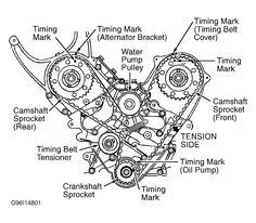 Attractive November 28, 2012 The Timing Belt Which Is Also Known As A Timing Chain,  Plays A Vital Role In The Function And Operation Of Your Vehicle,.