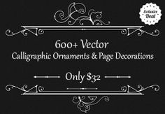 We wanted to bring you a massive collection with 603 top-of-the line calligraphic elements and page decorations that you will definitely find of great use! Here you will find lots of floral vectors, menu headpieces, calligraphic ornaments, illustrator brushes, typographic elements, vintage ornaments, frames, and more!