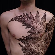 Anyone interested in a giant fern? Large scale, black and grey, preferably dotwork. Email esther{at}butterfatstudios.com for details. #bfatprojectoffer #ferntattoo #butterfatstudios