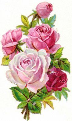 Oblaten-Glanzbilder-scrap-chromo: Beautiful bouquet of roses – around 1900 - Blumen Feather Painting, Oil Painting Flowers, Watercolor Flowers, Decoupage Vintage, Vintage Diy, Victorian Flowers, Vintage Flowers, Art Floral, Vintage Rosen