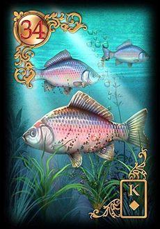 Saiba e aprenda mais sobre as combinações das cartas do Baralho Cigano Lenormand e aprofunde seus conhecimentos na carta Peixes.