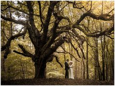 Bigger Picture Photography, Caragh, Co. Wedding Couples, Wedding Day, Big Picture, Photographers, Ireland, Romantic, Weddings, Portrait, Nature