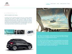 Screen 2 - Web Site Citroën