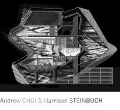 CHOI & STEINBUCH, Visceral Painterly: Shadows Refine Form. Section.