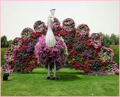 Cute Travels: Dubai Miracle Garden - Largest Flower Garden in the World Topiary Garden, Garden Art, Garden Design, Garden Birds, Easy Garden, Unique Gardens, Beautiful Gardens, Beautiful Flowers, Dubai Garden