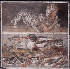annonavi-barocco:  Upper tier : cat with a partridge in her mouth; lower tier: ducks (on the left a male Eurasian Teal, on the right a Common Shelduck), birds, fish and shellfish. Roman mosaic.