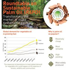 what is the roundtable on sustainable palm oil