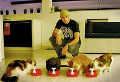 CAT MAN MONDAY: He's Single, Belgian, and Has Six Cats http://ihavecat.com/2014/04/21/cat-man-monday-hes-single-belgian-and-has-six-cats/ #cats #catman #belgian #Belgium #sixcats #rescuecats #animalrescue