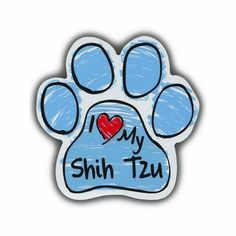 My Dog is My Co-Pilot Imagine This Paw Car Magnet 5-1//2-Inch by 5-1//2-Inch