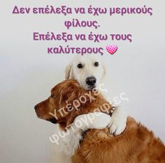 Greek Quotes, Dog Love, Animals And Pets, Texts, Friendship, Relationship, My Favorite Things, Funny, Dogs