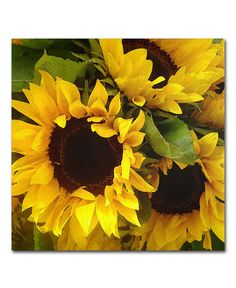 """'Sunflowers' Square Canvas Print by Amy Vangsgard, 18"""" x 18"""" - Wall Art - For The Home - Macy's"""