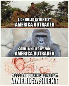 To save a child. Lets not forget about that. Smh America