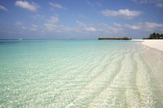 Passion For Luxury: Coco Palm Dhuni Kolhu Maldives