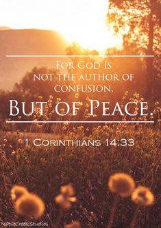 For God is not the author of confusion, but of peace. || Corinthians 14:33 || - Background image does not belong to me. - MapleCreekStudios