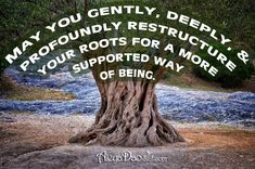 Quote for the day:  May you gently, deeply, and profoundly restructure your roots for a more supported way of being.