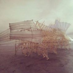 Theo Jansen- Have your kids make Jansen inspired creatures out of toothpicks and wood glue! write it a story.