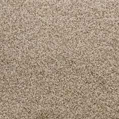 Designers Image Tender Touch Plush Carpet 12 Ft Wide At