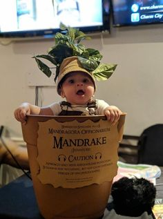 My boss dressed her baby up as a mandrake for Harry Potter trivia night! : aww harry potter halloween costumes : My boss dressed her baby up as a mandrake for Harry Potter trivia night! Primer Halloween, Halloween Costumes For 3, Halloween Quotes, Family Costumes, Baby Costumes, Halloween Fun, Halloween Pictures, Boss Baby Costume, Holiday Pictures