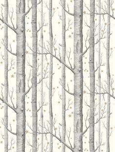 Woods and Stars