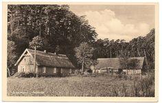 Schwarzort 1941, Hochwald, Kurische Nehrung
