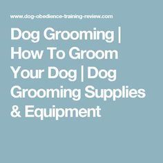 Dog Grooming   How To Groom Your Dog   Dog Grooming Supplies & Equipment