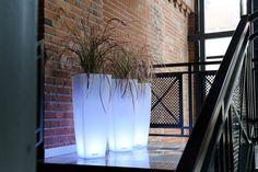 light flower pots Ricola Nuno'ni nunoni.com