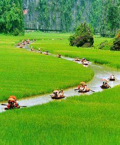 Cuc Phuong National Park, Ninh Binh province, Vietnam