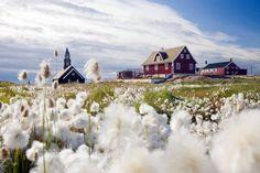 Groelandia -ilulissat-chiesa-cotone-alamy.jpg