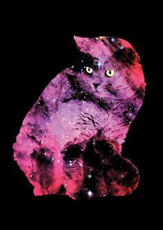 Celestial Cat - The British Shorthair & The Pelican Nebula Art Print by Zippora Lux