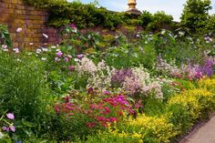 Herbaceous Border ©Shutterstock / Shelli Jensen