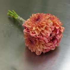 Wedding Bouquet of Orange Dahlia.  They're in season in the late summer/early fall.  May be our best option :)
