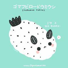 JapanLover.Me @japanloverme This cuddly-looki...Instagram photo | Websta (Webstagram)