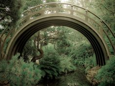Moon Bridge - Japanese Tea Garden  Amazing discounts - up to 80% off Compare prices on 100's of Hotel-Flight Bookings sites at once Multicityworldtravel.com