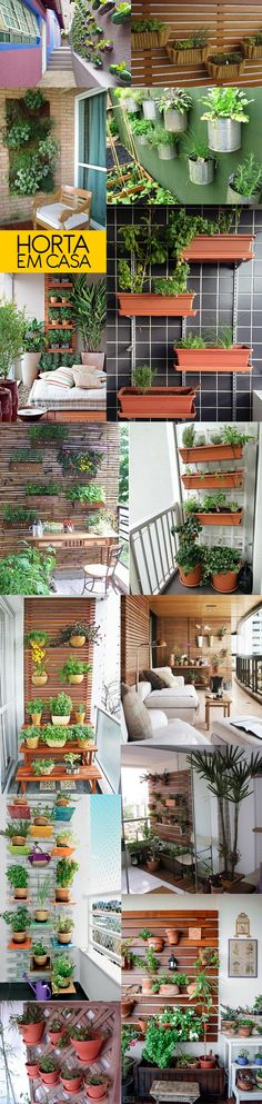 Como montar uma horta vertical na sua varanda  Bramare por Bia Lombardi