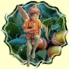 Acorn Fairy {Oak Tree}
