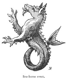 This is a hippocampus. In English, it's called a sea horse. This depiction is really some kind of monster. Fantasy Creatures, Mythical Creatures, Sea Creatures, Mythological Creatures, 4 Elements, Dragons, Sea Serpent, Merfolk, Sea Monsters