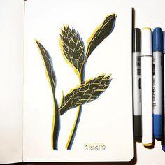 Julia Fink (@julia_gefinkelt) • Instagram-Fotos und -Videos Glitch, Drawings, Videos, Instagram, Hacks, Sketches, Drawing, Portrait, Draw