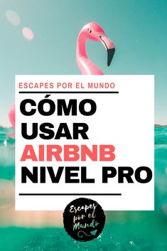 ▷ Cómo usar AIRBNB como un PROFESIONAL en 10 pasos - AIRBNB an excellent platform to get accommodation around the world at the best price, do you already know it? dare to take full advantage of it. Travel Goals, Travel Packing, Travel Advice, Travel Tips, Travel Hacks, Time Travel, Places To Travel, Travel Destinations, Travelling Tips