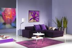 sala en color violeta