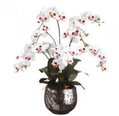 burgundy cream silk orchid arrangement in silver vase arwf1261 - Silk Orchids