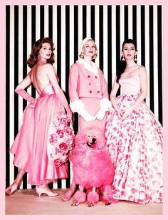 cdb32f7920 99 Best Pink images