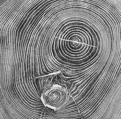 // Brian Nash Gill - Woodcuts