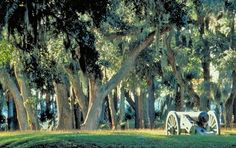 Fort McAllister Historic Park in Richmond Hill, Georgia.