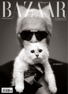 The Best Magazine Covers of 2013: Best Use of a Cat - Harper's Bazaar UK October  Harper's Bazaar UK featured two pairs of cat ears, those of Karl Lagerfeld and the famous Choupette, for a limited-edition October cover.