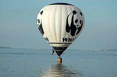 WWF Panda balloon