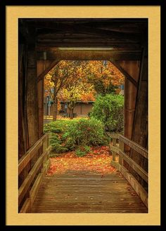 Bridge Framed Print featuring the photograph Looking Out by Marnie Patchett
