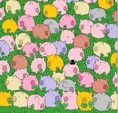Do you have an eye for detail? You'll need it to find the only four-leaf clover in this picture. Goo... - Image Pinterest
