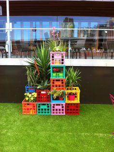 Coloured Crate Display/Vertical Garden
